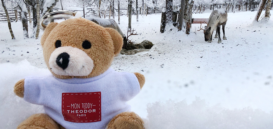 THEODOR's teddy bear in Lapland